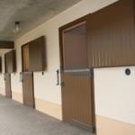 Neuer Stall_1